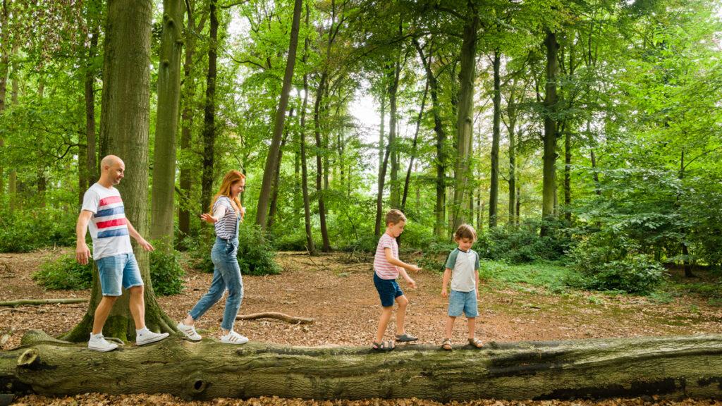 Mama, papa en twee kinderen die samen over een boomstam lopen in het bos. Familie en portretfotografie