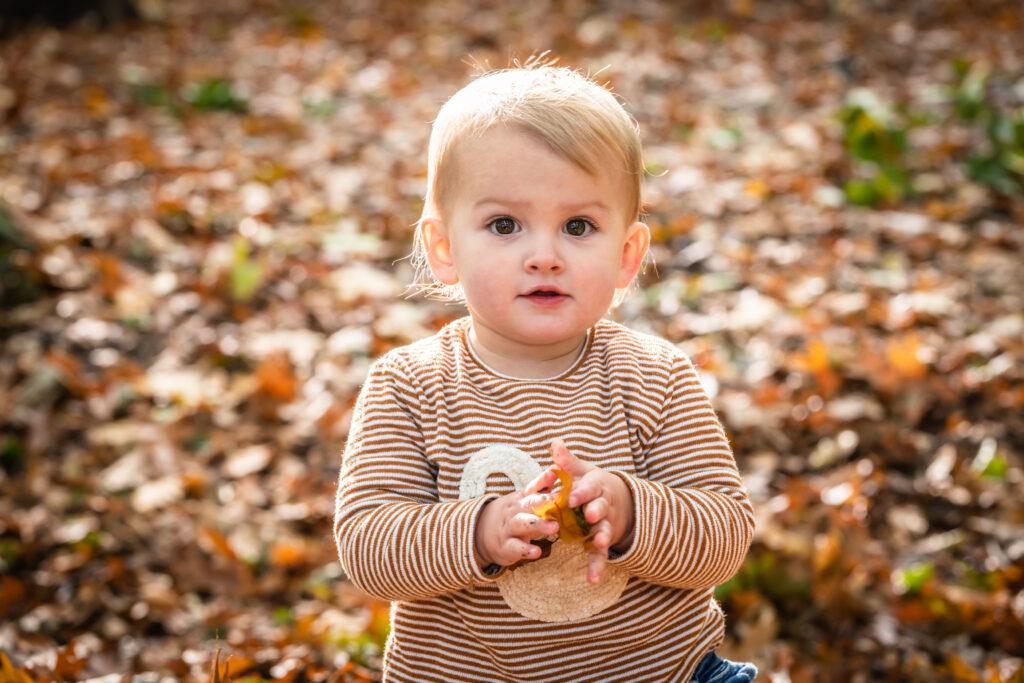 Kind spelend met bladeren. Familie en portretfotografie